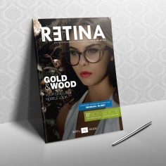 retina 06-03