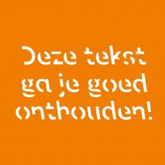 'met dit lettertype onthoud je woorden beter'